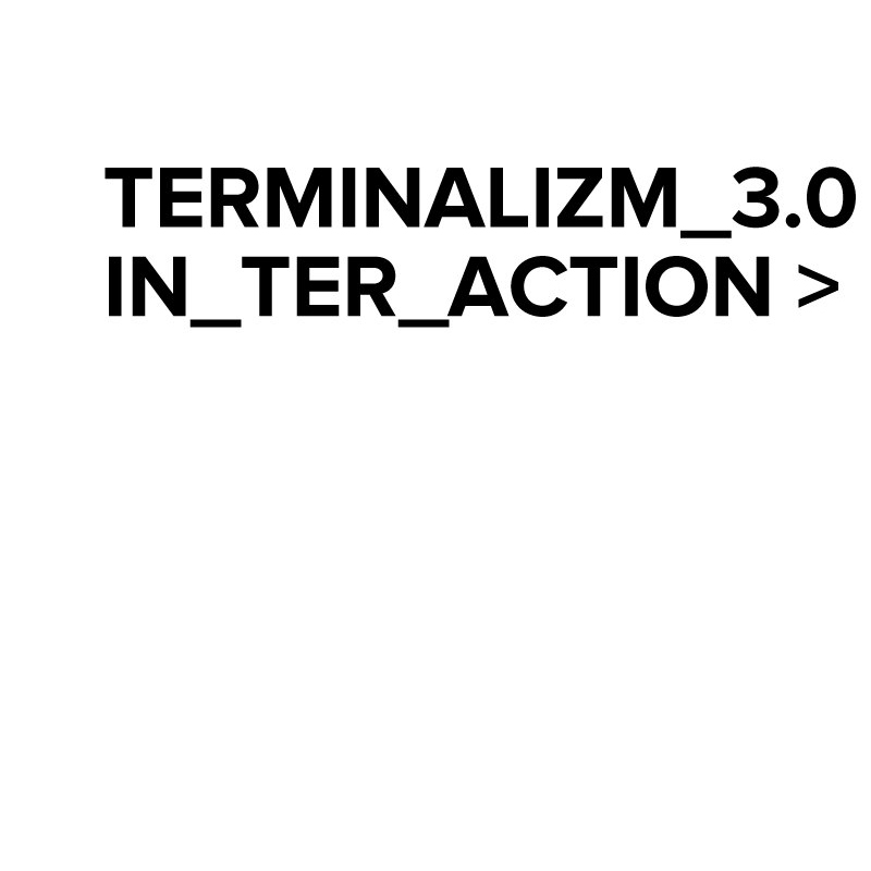 TERMINALIZM INTERACTION